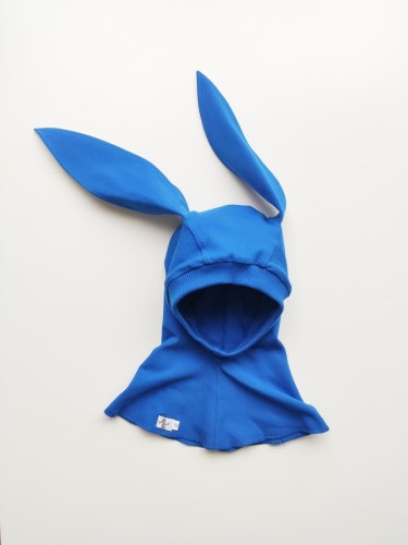 Blue Bunny Spring
